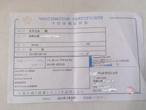 予防注射証明書1