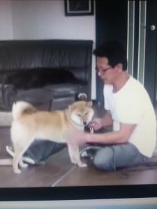 森田誠の犬のしつけ法